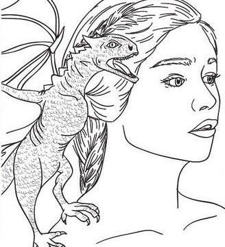 Descarga Dibujos De Mandalas Para Colorear Y Pintar 2020