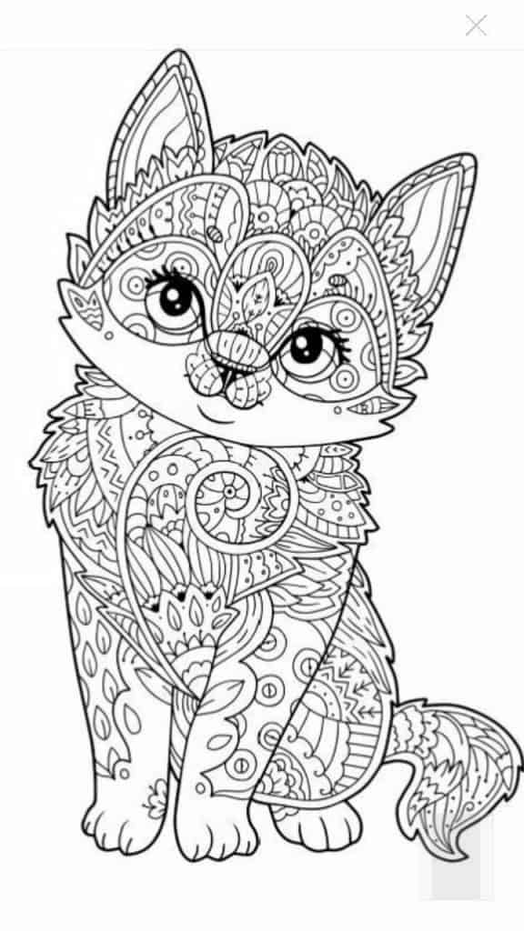 imagenes de gato unicornio para colorear