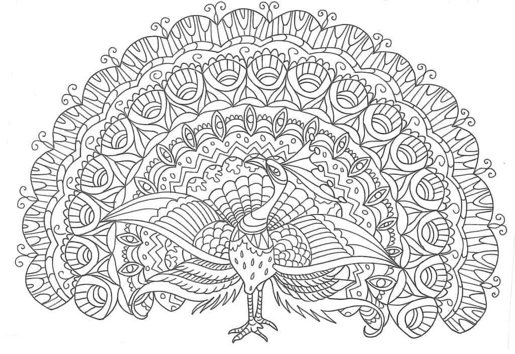 Mandala de pavo real para pintar