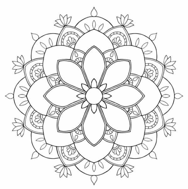 Flores fáciles