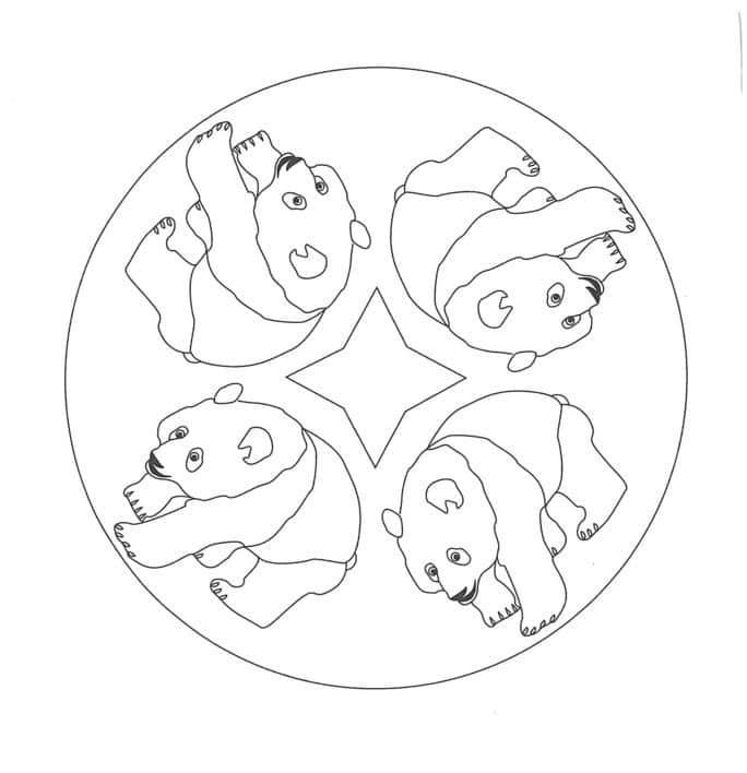 osos para dibujar